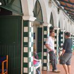 Viaje a Menorca: Días 6, 7 y 8 (Ciutadella – Algaiarens – Macarella y Macarelleta – Cap d'Artrutx – Mitjana – Regreso)