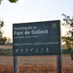 #BlogTripFamiliesVallesOriental: Actividades en Gallecs (Mollet del Vallès)