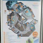 Viaje a Noruega: Acuario de Alesund