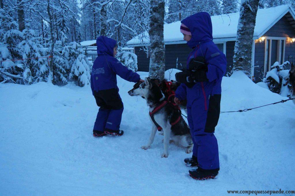Los peques jugando con los perros que empujaban nuestro trineo.