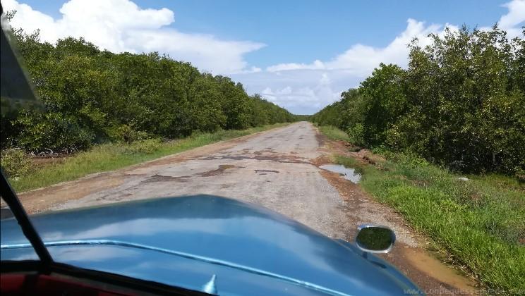Vista de la carretera que hacíamos cada día para ir a Cayo Jutías