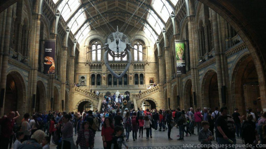 El impresionante vestíbulo del museo de Historia Natural